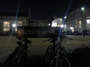 Duke - Krzyville