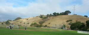 Castro Valley Hillside view