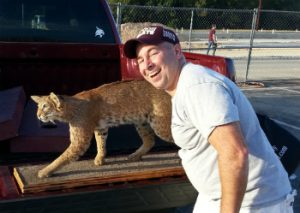 tx-st-me-and-bobcat-web